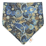 Smart Bottoms Bandana Bib *Limited Edition - Dreamland*